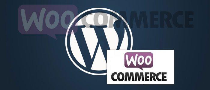 Интернет магазин Woocommerce