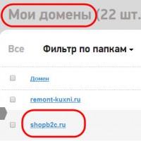 практическая-регистрация-домена-08