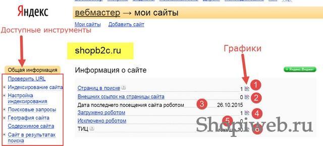 яндекс-вебмастер-shopiweb.ru-15
