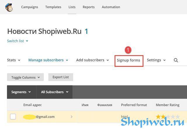 45a6667fe9e8c1 Формы подписки MailChimp: создание, дизайн, размещение на сайте