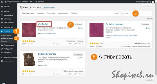 оптимизация WordPress для интернет магазина плагин Установка плагина cyr-to-lat