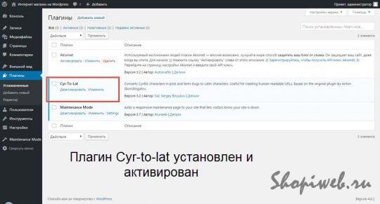 оптимизация WordPress для интернет магазина плагин cyr-to-lat