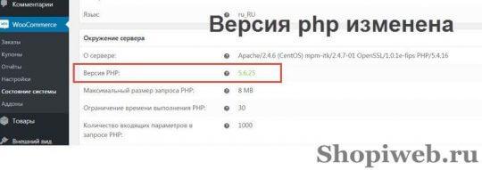 sostoyanie-wordpress-dlya-woocommerce-2
