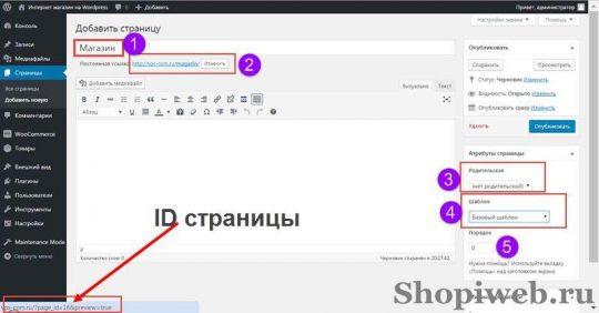 sostoyanie-wordpress-dlya-woocommerce-7